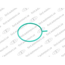 Connect  Резинка под вакуумный насос 1.8D  FORD   1113201